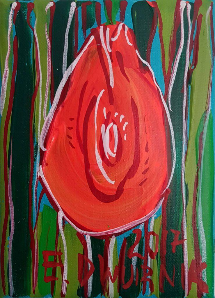 Szkarłatny tulipan